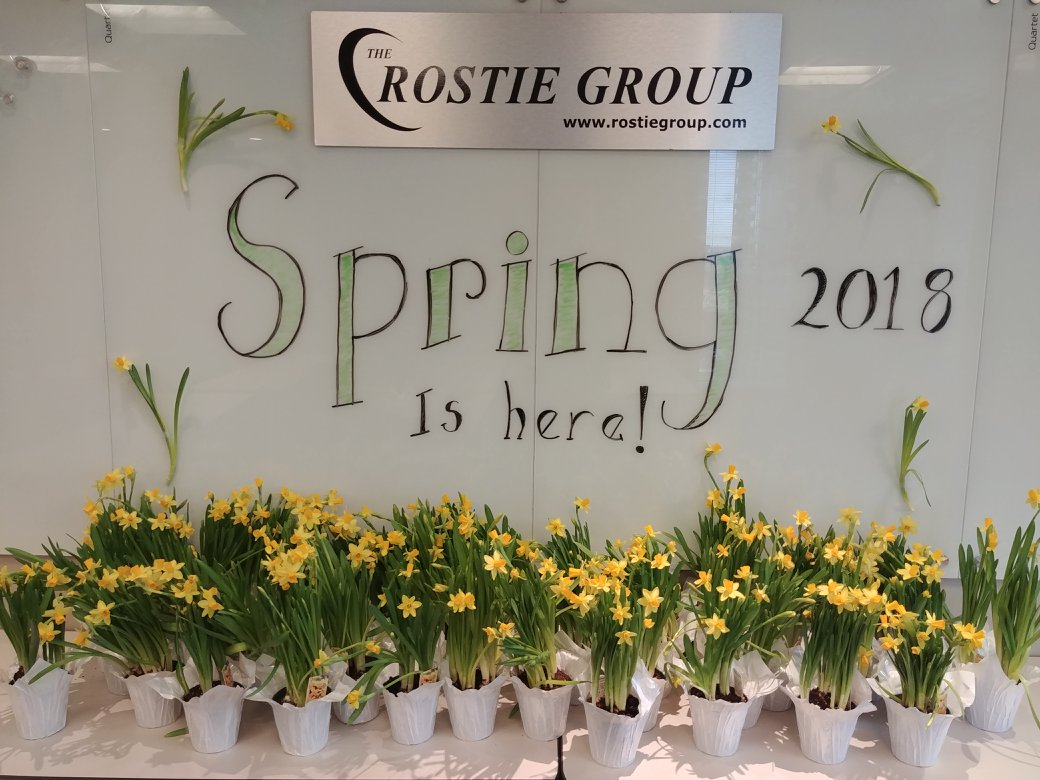 Rostie Group Spring Image